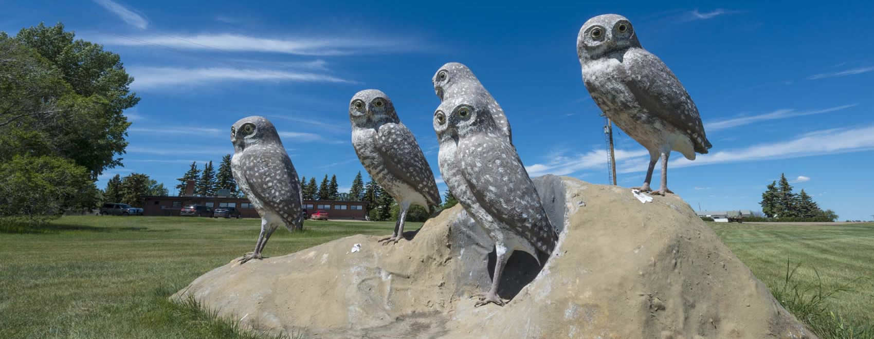 Burrowing Owls - Wildlife Sculptures of Leader Saskatchewan - Photo by James R Page