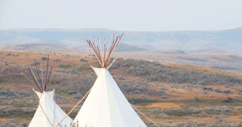 The Story of Grasslands National Park